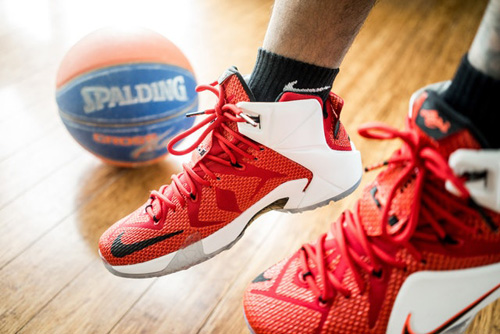 shoes-lebron-nike-spalding